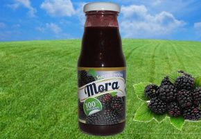 Frutta da bere - Mora